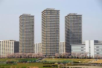Tokyocanon3