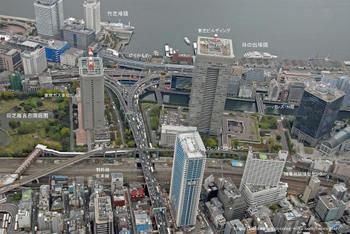 Tokyoshiba1