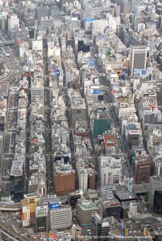 Tokyogzinza1_2