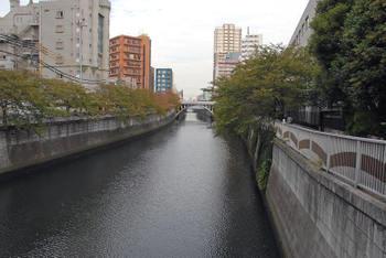 Tokyoosaki31