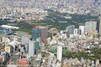 Tokyoaoyama11