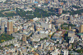 Tokyowasedaunv1
