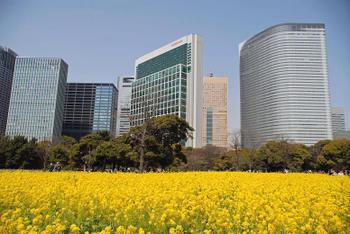Tokyoshiodome08022