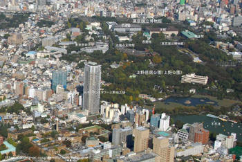 Tokyoyakushiji08031