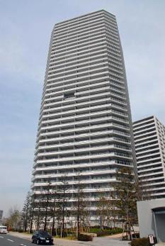 Yokohamacotton08042