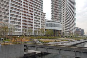 Tokyotoyosu08053