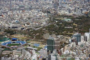 Tokyoaoyama08051
