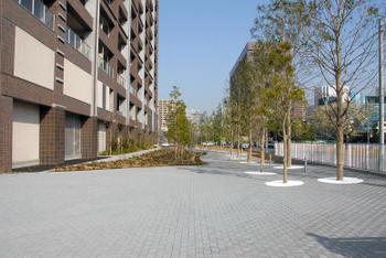 Tokyokachidoki08055