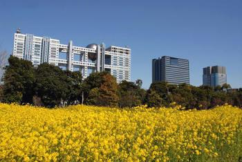 Tokyodaiba08064