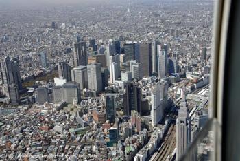 Tokyoshinjuku08081