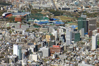 Tokyoaoyama08081