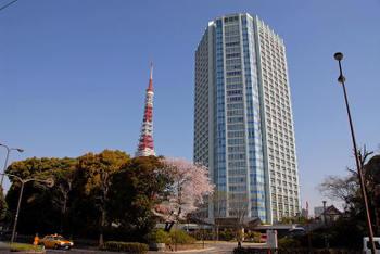 Tokyoshiba08092