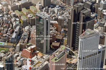Tokyoyozemi08091