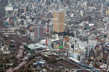 Tokyonipri08091