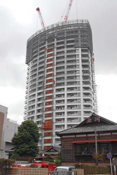 Tibafunabashi08112