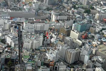 Tibakashiwa08111