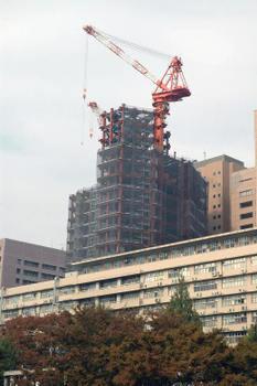 Tokyotokyomedica08123