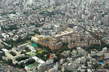 Tokyohiro09011