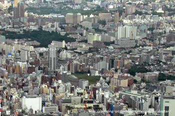 Tokyontv09021