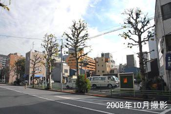 Tokyominato209022