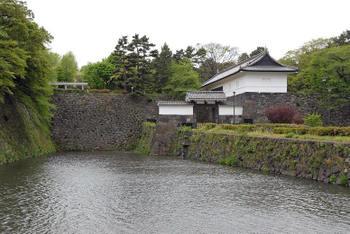 Tokyotidorigafuti09043