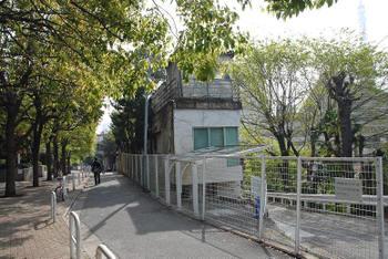 Tokyotoranomon09043
