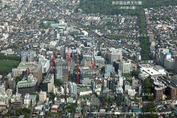 Tokyomusashino09051