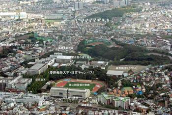 Yokohamahiyoshi09081