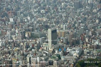 Tokyoasakusa09091