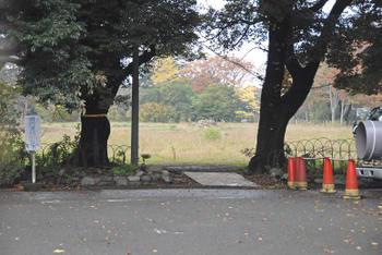 Tokyonakano09114