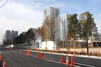Tokyoharumi09119