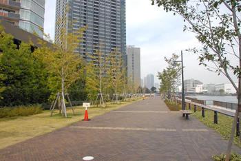 Tokyotoyosu09129
