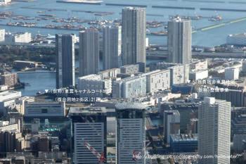 Tokyoshinonome09121