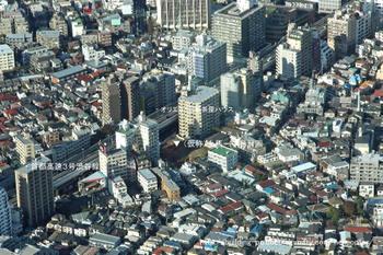 Tokyokamiuma10011