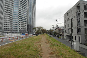 Tokyotamagawa100113