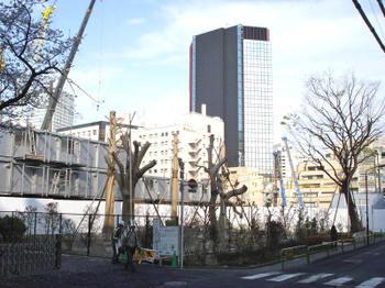 Tokyoawaji10042