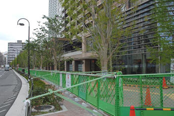 Tokyogotanda10063