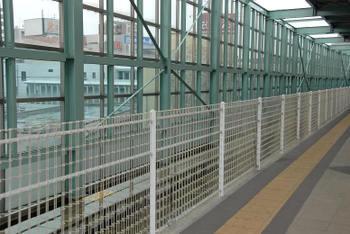Kanagawanoborito10079