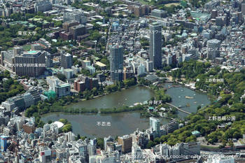 Tokyoueno10071