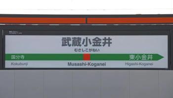 Tokyomusashikoganei10081