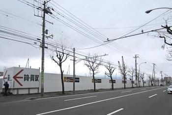 Sapporokotoni11051