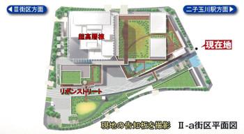 Tokyotamagawa12123