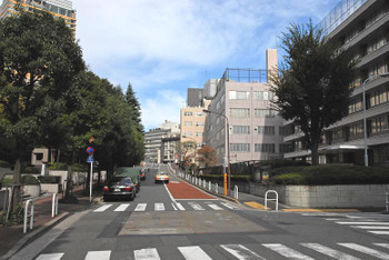 Tokyotoranomon13033