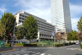 Tokyotoranomon13036
