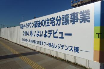 Chibamakuhari14013