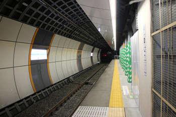 Tokyoshimo141020