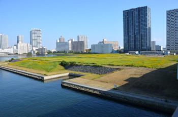 Tokyoariake15011