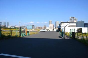 Tokyoariake15016