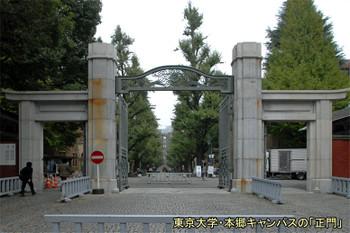Tokyotokyounv15031