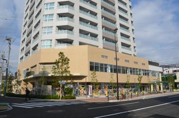 Tokyomikawajima150312